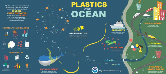 10 Shocking Infographics About Plastic Waste In The Oceans