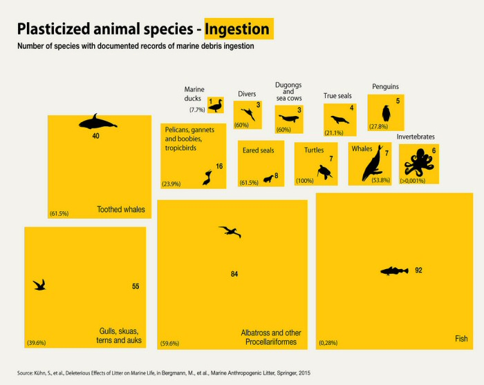 Numbers Of Animal Species Which Have Ingested Marine Debris - 10 Shocking Infographics About Plastic Waste In The Oceans